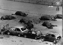 Hyde Park IRA Bombing