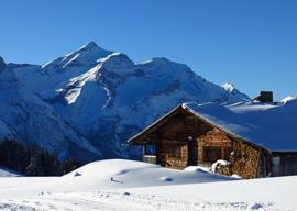 Ski Salons