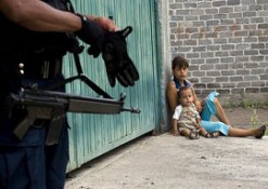 The Growing Pains of the Mexican Drug War
