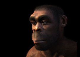 In Defense of Neanderthals