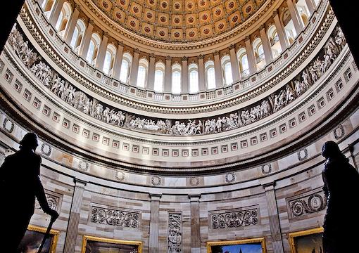U.S. Capital Dome